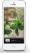 壁紙素材 iPhone iPod Android クローバー 写真 加工 ダウンロードボタン