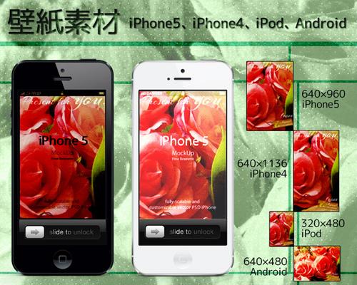 スマートフォン 壁紙素材 iPhone Android レトロローズ 写真素材