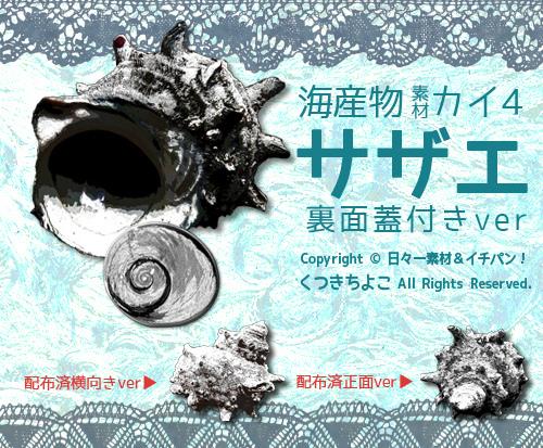 フリー素材 イラスト素材 海産物 サザエ 貝の蓋 フィボナッチ数列 サンプル画像