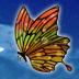 Twitter ツイッター アイコン 空 夜空 星空 宇宙 バタフライ サンプル画像