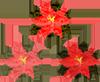 フリー素材 イラスト クリスマス ポインセチア リンクアイコン