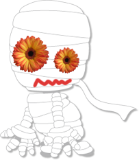 フリー素材 切抜き画像 ガーベラ 花