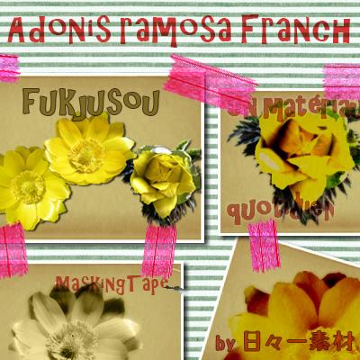 フラワーパーツ 春 花素材 福寿草 サンプル
