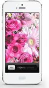 壁紙素材 iPhone iPod Android 花 写真 加工 ダウンロードボタン