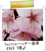 Twitter ヘッダー画像 アイコン 写真素材 桜 サンプル画像