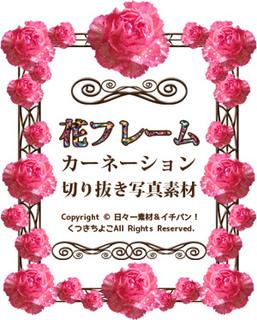 花フレーム カーネーション サンプル画像