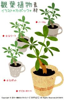 フリー素材 イラスト カポック 観葉植物 グリーン サンプル画像