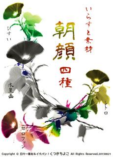 フリー素材 イラスト 花 朝顔 夏モチーフ サンプル画像
