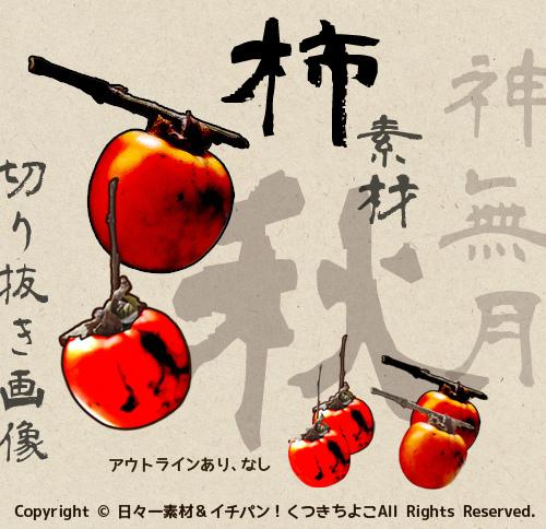 フリー素材 切り抜き画像 柿 季節 秋 サンプル画像