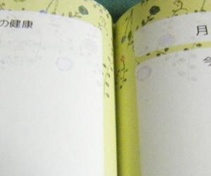 家計簿 日記・ダイエット・家計簿がこの一冊で!『SCRAP&RECORDING BOOK』(スクラップアンドレコーディングブック) サンプル画像