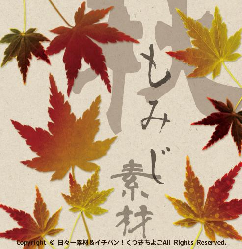 フリー素材 切抜き画像 写真 紅葉 もみじ サンプル画像