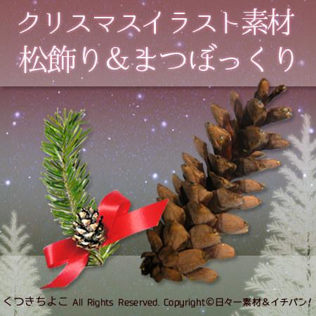 フリー素材 イラスト 松ぼっくり 松の枝 クリスマス 切抜き写真 サンプル画像