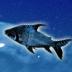 Twitter ツイッター アイコン 空 夜空 星空 宇宙 淡水魚 サンプル画像