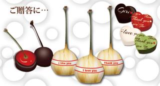チョコレートコーティングチェリー サンプル画像